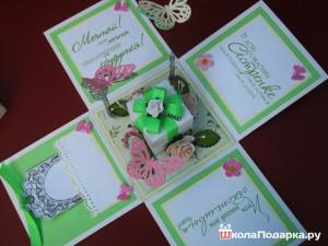 Цветок глоксиния уход в домашних условиях: глоксиния
