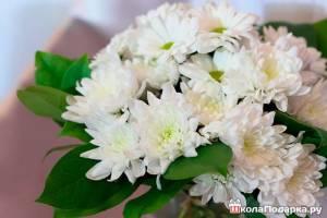 Какие-цветы-подарить-белые-хризантемы