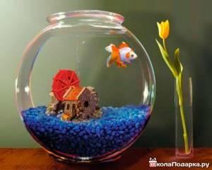 золотая-рыбка-подруге-300x240