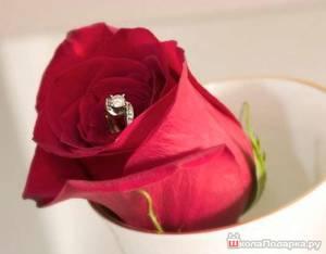 кольцо-в-розе