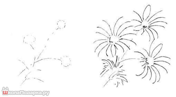 как-рисовать-цветы-маме1