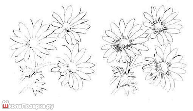 как-рисовать-цветы-маме2