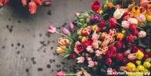 Цветы для бабушки на 8 марта