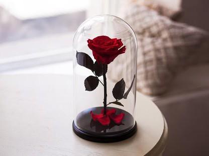 роза-в-колбе